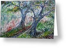 Verde Park Greeting Card