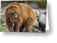 Very Big Bear Greeting Card