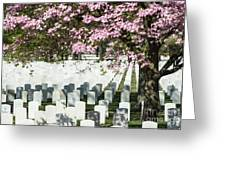 Veterans National Cemetery Greeting Card