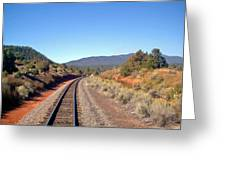 via Train 658 Greeting Card