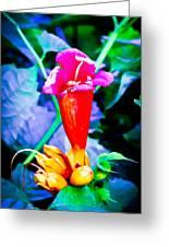 Vibrant Beauty Greeting Card