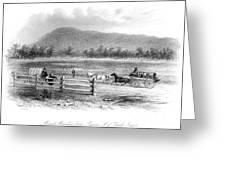 Victoria, Australia, 1856 Greeting Card
