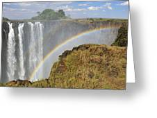 Victoria Falls Greeting Card by Tony Beck