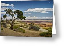 View From A Mesa Greeting Card