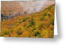 View From North Mountain Look-off Greeting Card