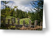 View From Picket Fence Greeting Card