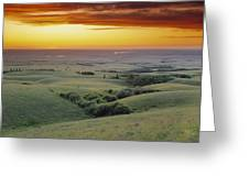 View From The Cypress Hills Greeting Card