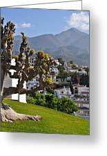 View From The Parador Nerja Greeting Card
