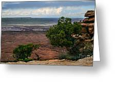View Of Canyonland Greeting Card