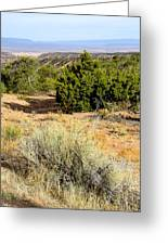View Of The Desert New Mexico Greeting Card