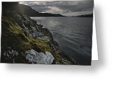 View Of The Mossy Shoreline Of Taraba Greeting Card
