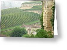 View Over The Vineyards From Saint Emilion France Greeting Card