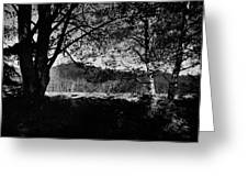 View Through The Trees Greeting Card