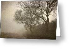 Vigilants Trees In The Misty Road Greeting Card