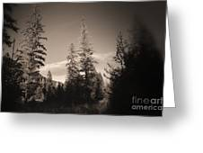Vignette In Sepia  Greeting Card