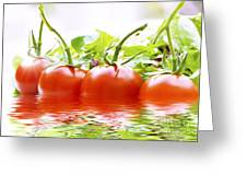 Vine Tomatoes And Salad With Water Greeting Card
