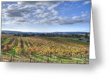 Vines In Fields Greeting Card