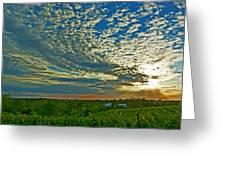 Vineyard Sunset I Greeting Card