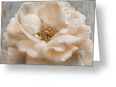 Vintage Rose I Square Greeting Card