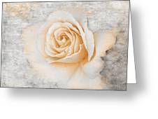 Vintage Rose II Greeting Card