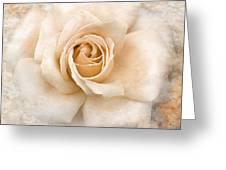Vintage Rose V Square Greeting Card