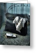 Vintage Suitcase On Brass Bed Greeting Card