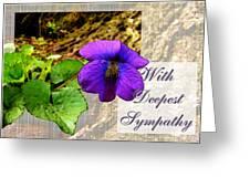 Violet Greeting Card  Sympathy Greeting Card