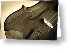 Violin Isolated Greeting Card