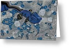 Violinelle - V02-09a Greeting Card