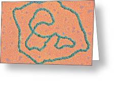 Viral Dna Rings Greeting Card