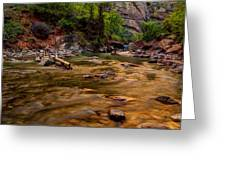 Virgin River Zion Greeting Card