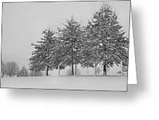 Virginia Snow Greeting Card