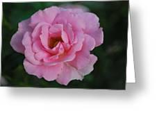 Virginia Tech Peace Garden 5 Greeting Card