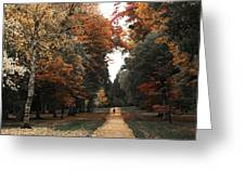 Virginia Water Greeting Card