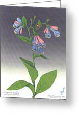 Viriginia Bluebells Greeting Card