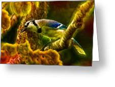 Visions Of A Blue Jay Greeting Card
