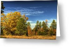 Visions Of Fall  Greeting Card