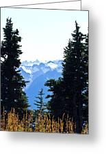 Vistas Along The Trail Greeting Card