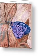 Visualization Butterfly Greeting Card
