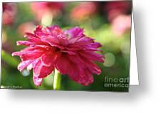 Vivid Floral Greeting Card