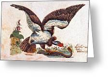 Vulture Attacking A Snake Greeting Card