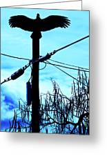 Vulture On Phone Pole Greeting Card