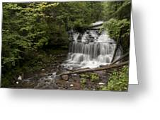 Wagner Falls Forest Greeting Card