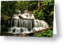 Wagner Falls In Summer  Greeting Card