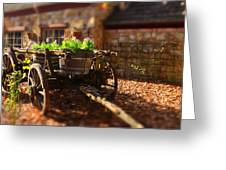 Wagon Of Flowers Greeting Card by Andrew Dickman