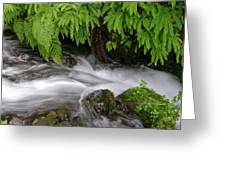 Wahkeena Falls One Greeting Card