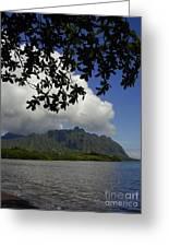 Waiahole Beach Park Greeting Card by Mark Gilman