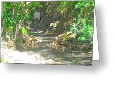 Waimea Falls Park Greeting Card