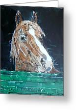 Waiting - Horse Portrait Greeting Card