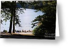 Walden Pond Greeting Card by John Small